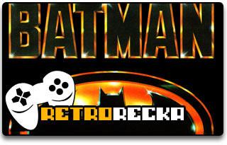 Batman The Video Game